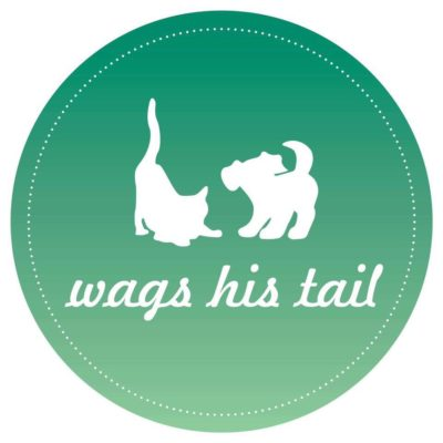 wags his tail